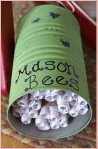 green cannister mason bees hotel